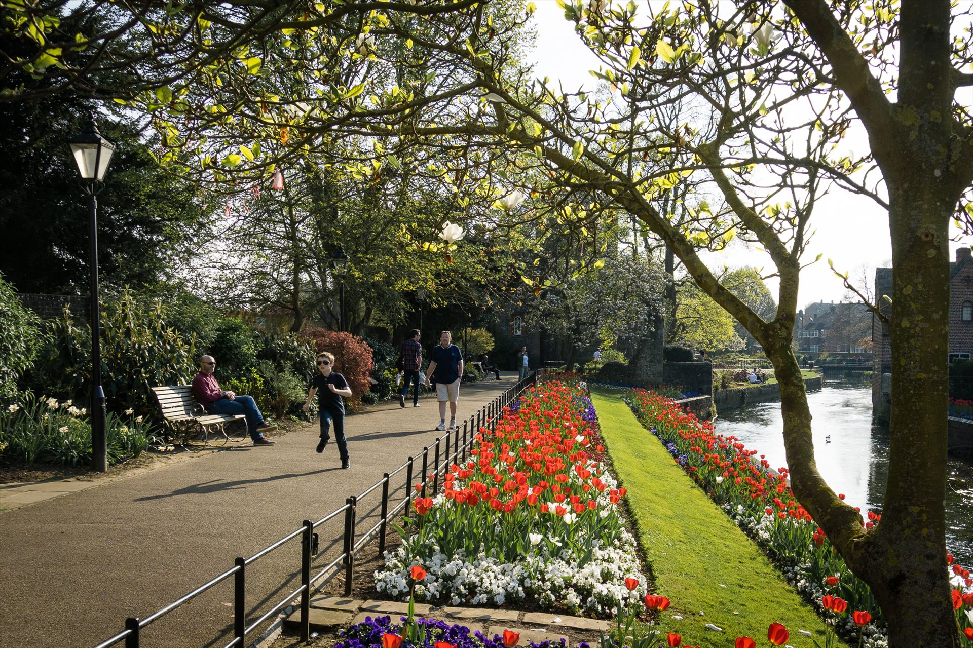 Spring Canterbury's Westgate gardens with its spring blooms